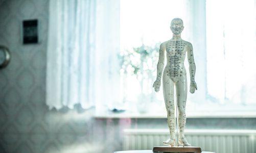 Garść informacji na temat osteopatii.